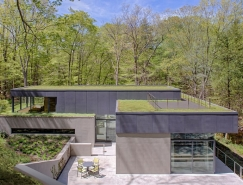 建筑与自然的融合:Weston林中别墅欣赏