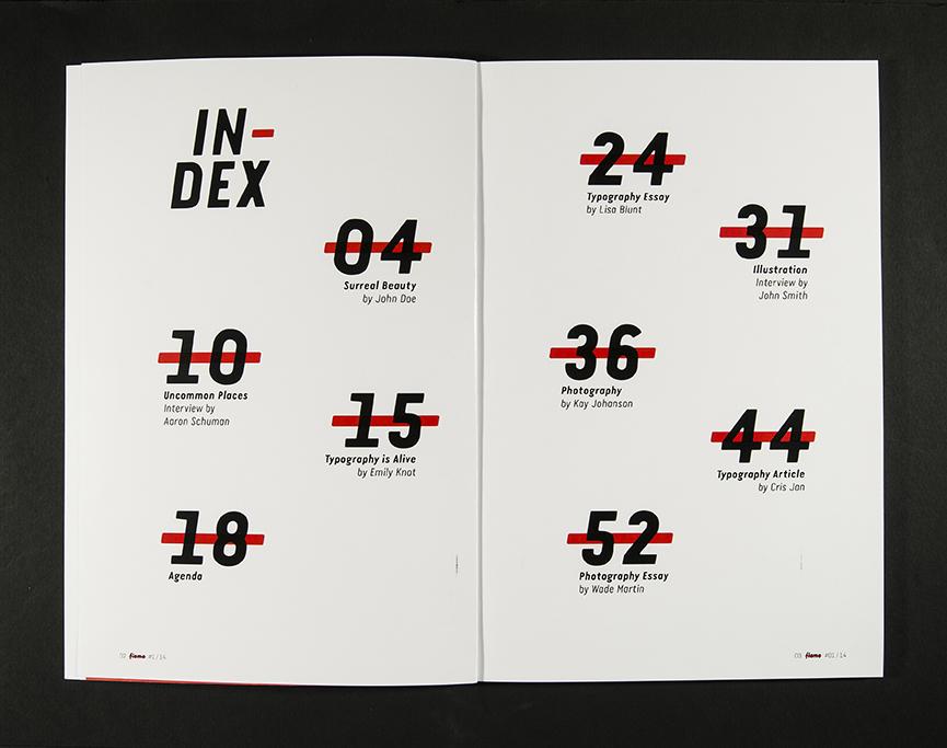 优秀平面设计作品集(66)(2)