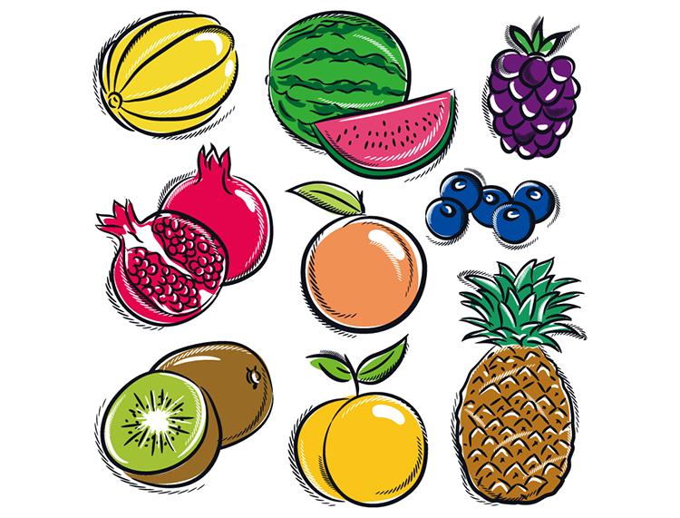 各种手绘水果矢量素材(2)