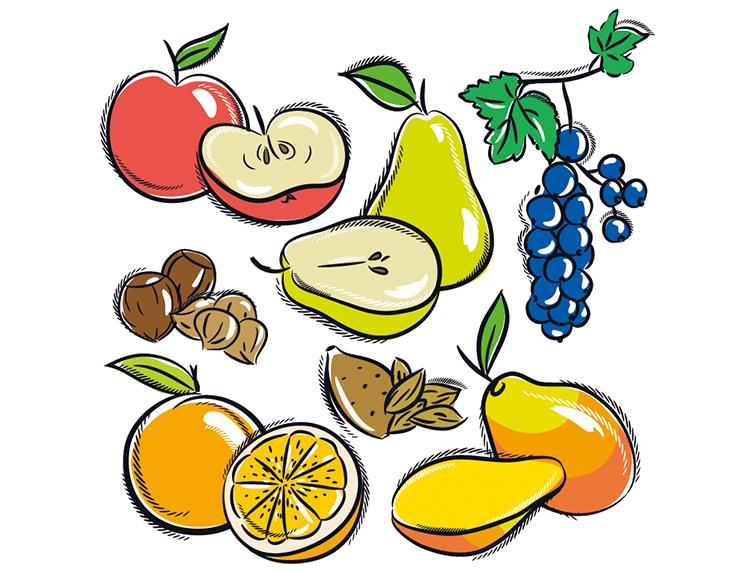 各种手绘水果矢量素材(3)