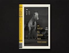 David Lynch杂志版式设计欣赏
