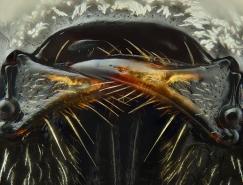 极致的细节:AlHabshi高清昆虫微距摄影