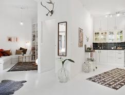 哥德堡50平米纯白公寓设计