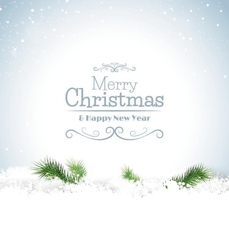 eps格式,圣诞节,雪花,雪地,背景,松枝,merry christmas,矢量图