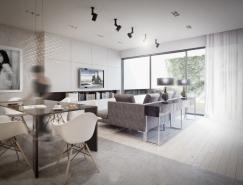 波兰精致的大户型公寓设计