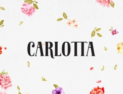 Carlotta面包店品牌和包裝設計欣賞