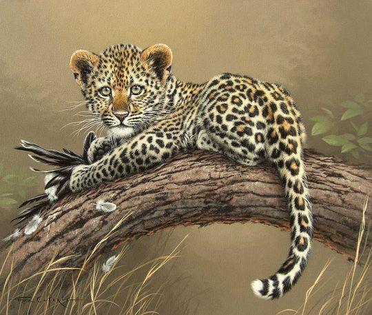 caforio逼真写实的动物绘画作品(4)