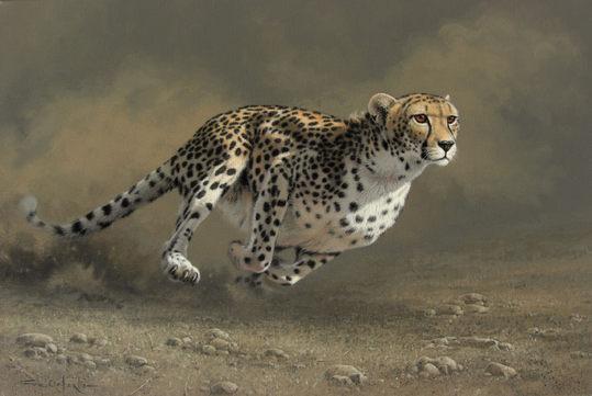 caforio逼真写实的动物绘画作品(2)