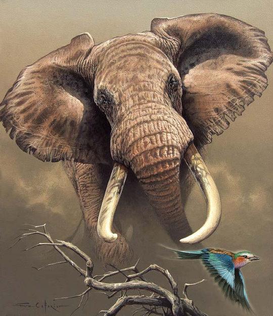 的动物绘画作品