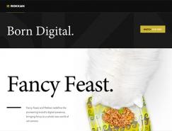 使用衬线字体的国外网页澳门金沙网址欣赏