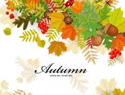 五彩秋叶背景矢量素材