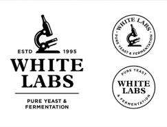 手工啤酒显微镜:怀特纯酵母发酵实验室新品牌形
