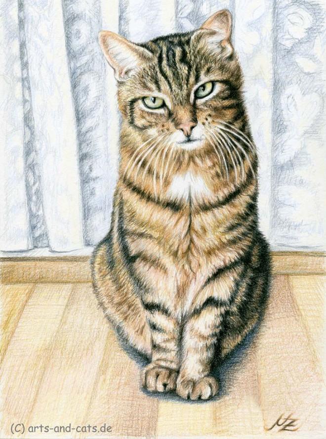 25张精细逼真的动物绘画作品欣赏(2)