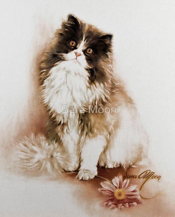 30张猫咪铅笔画欣赏(2)