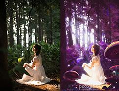 Photoshop打造夢幻的紫林美女圖片