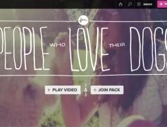 网页设计首屏图文混排的10大技巧