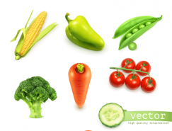 新鲜蔬菜矢量素材