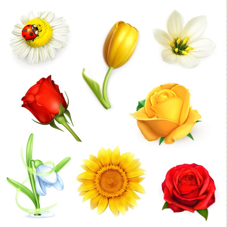 各种鲜花矢量素材
