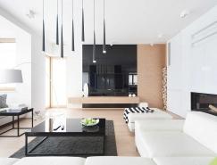 波兰D24极简风格住宅设计