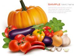精致的新鲜蔬菜矢量素材