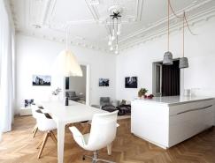 维也纳复古风格H + M公寓设计
