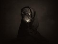 Vincent Lagrange动物肖像摄影澳门金沙网址