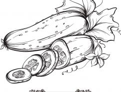 手绘蔬菜系列:黄瓜矢量素材