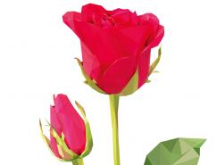 多边形风格玫瑰花矢量素材