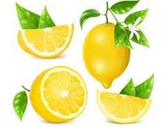 黄柠檬矢量素材