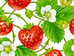 新鲜的草莓和草莓花矢量素材