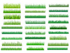 绿色草地矢量素材(2)