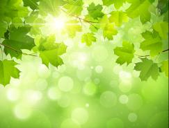 梦幻春天绿叶光晕背景矢量素材(1)
