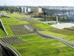 Jean-philippe Pargade:巴黎校园起伏绿色屋顶