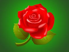 玫瑰花PSD素材