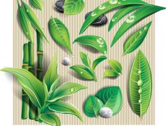各种翠绿树叶矢量素材