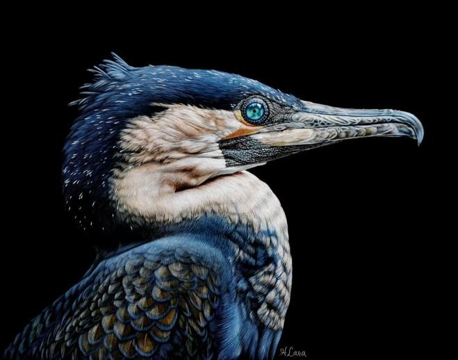 lara超逼真的动物绘画作品
