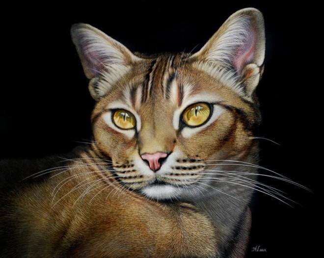 lara超逼真的动物绘画作品(2)