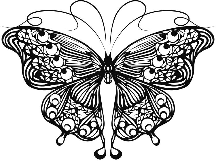 线描蝴蝶矢量素材图片