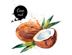 手绘水彩椰子矢量素材