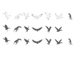各种鸟类剪影矢量素材
