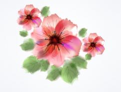 漂亮的水彩花朵矢量素材
