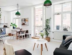 哥德堡一居室北欧风白色公寓设计