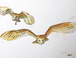 Philipp Grein动物水彩插画欣赏