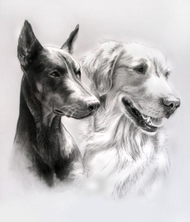 30个可爱狗狗绘画作品欣赏