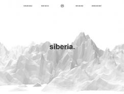 21个简约黑白风格网页设计