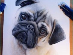 32張精美的動物繪畫作品