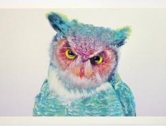 细腻精美的猫头鹰插画作品