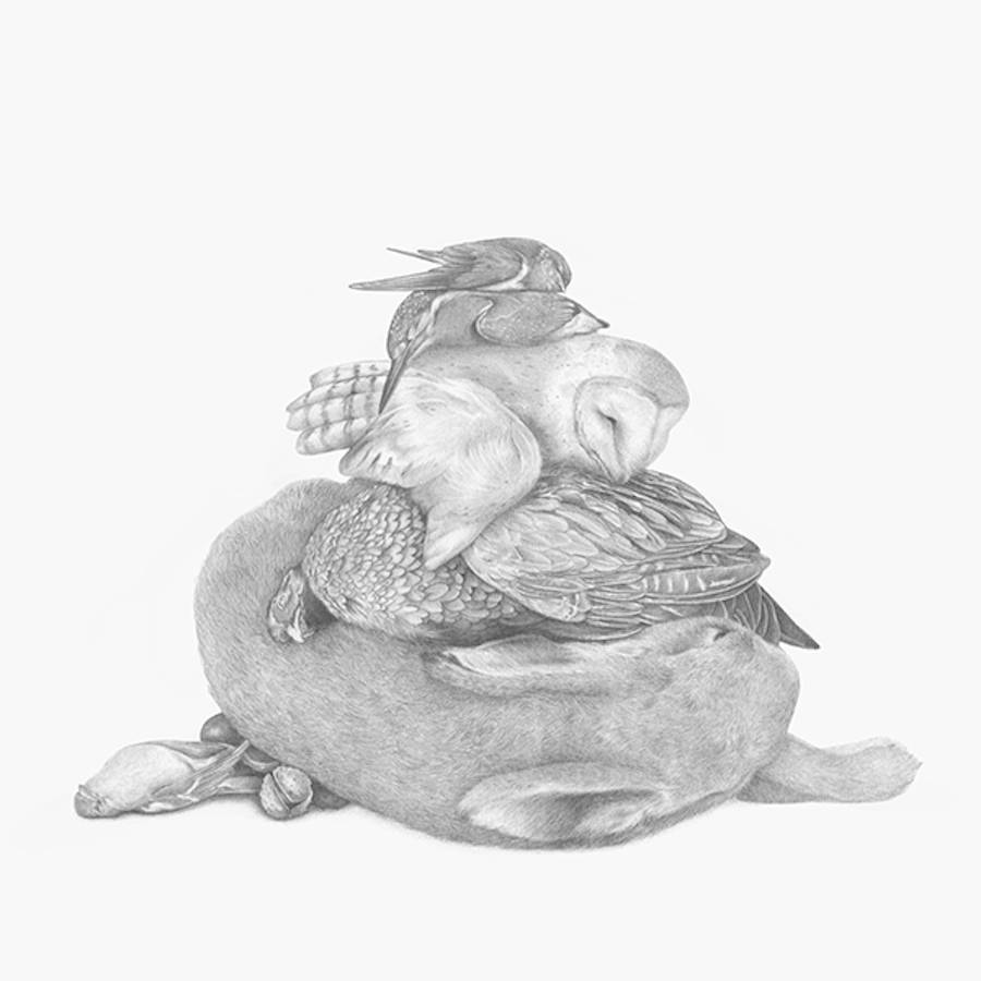 nestor精细黑白动物插画欣赏