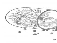 Henn Kim創意黑白插畫作品