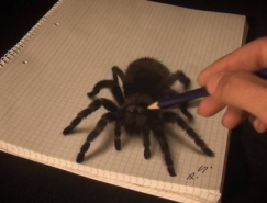 Stefan Pabst超逼真的3D立體畫欣賞